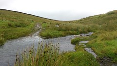 The Spine Challenge Route over 3 days; day 3: Malham to Hawes (purplespace) Tags: pennineway spinechallengeroute spinechallenger spineroute runningthepennineway edaletohawes edale hawes runningpennineway