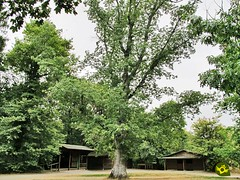 Bosque de Orgi (Senditur) Tags: bosque de orgi robledales ultzama y basaburua navarra que ver hacer en senditur senderismo turismo naturaleza valle