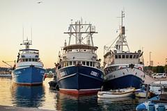 Port Pula (tamson66) Tags: boat port pula istria croatia