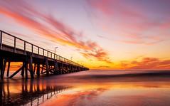 Semaphore Jetty 16.9.16 (Nathan Godwin) Tags: sunset sunsetphotography sunsetporn sunsetseascape sunsets goldenhour adelaide adelaidephotographer adelaidebeaches southaustralia southaustralianbeaches jetty pier semaphore australiansunset australia photography nikon nikonphotography d800 longexposure longexpo golden pink reflection cloud cloudscape cloudporn clouds water ocean seascape beachscape semaphorebeach