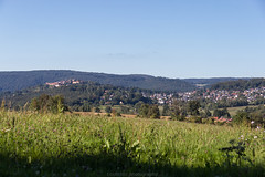 Dilsberg in August 2016 IV (boettcher.photography) Tags: august summer sommer 2016 neckargemnd germany deutschland dilsberg badenwrttemberg rheinneckarkreis meadow wiese sashahasha boettcherphotography