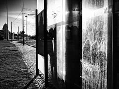 By the Morning... (pedroalves44) Tags: monochrome morning man street streetphotography shadows silhouette solitude lisboa lisbon light lonesome blackwhite bw blackandwhite urban portugal public