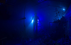 IMG_5602a (matek 21) Tags: lightpainting longexposure lp liht lighpainting light licht scary silhouete alien mateuszkrol mateuszkrl malowaniewiatem varta vartaflashlight vartabatteries ghost