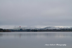 Canberra (Anna Calvert Photography) Tags: canberra lotusbay australia water trees reflections landscape outdoors fog winter yacht boat nature lakeburleygriffin lake balloon weather mist