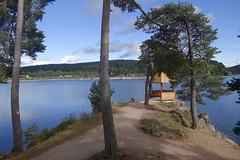 _DSC5557 (chicour) Tags: sony rx100 rx100m2 rx100ii allemagne germany t summer 2016 schluchsee
