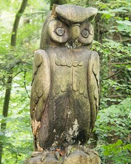 Eule Wood Sculpture, Emmen, Lucerne, Switzerland (jag9889) Tags: sculpture jag9889 owl reuss 20160727 wood publicart centralswitzerland switzerland emmen outdoor 2016 europe igemmenimwald cantonlucerne alpine art artist ch carver figurenweg forest foresttrail helvetia holz holzskulpturenweg innerschweiz interessengemeinschaft kantonluzern lu landscape lucerne luzern reussuferweg riverbank schnitzer schweiz skulptur skulpturenweg streetart suisse suiza suizra svizzera swiss woodcarver zentralschweiz