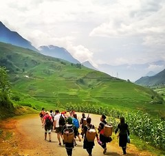 Trekking in Sapa, Vietnam #trekking #travel #backpacking #tribu # traveling (Doing the distance) Tags: trekking travel backpacking tribu