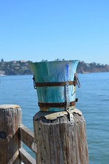 Bucket (Neal D) Tags: california sausalito planter bucket post water waterfront