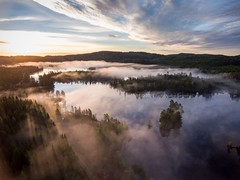 One early morning in the forest (B.AA.S.) Tags: norway norge nature natur nedreeiker sunrise sun sunbeams mist misty morning morningmist morgendis forest fog foggy skog buskerud beautyinnature water woods woodland reflection refleksjoner earlymorning scene aerialview drone 2016 drammen