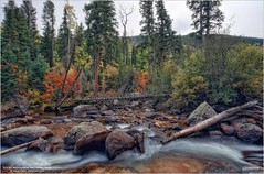 September View Along St. Vrain Creek in Rocky Mountain National Park (Tom Wildoner) Tags: tomwildoner leisurelyscientistcom leisurelyscientist rocky mountain national park nps rockymountainnationalpark aspen tree colorful color water flow flowing stream creek logs hiking hike st vrain rmnp canon canon6d teamcanon outdoors nature environment september 2016 colorado co mountains hdr tripod