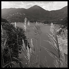 Beautiful scene (d-k-t) Tags: hongkong duotone taitamreservoir p1050779