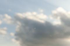 ... tutti sanno che i porcospini odiano essere lavati... (UBU ♛) Tags: blue blues blureale blupolvere bluacqua ©ubu unamusicaintesta landscapeinblues bluubu luciombreepiccolicristalli
