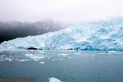 IMG_6405.jpg (MonkeySeeMonkeySnap) Tags: old blue cold ice nature water alaska boat ancient ak glacier seward aialik
