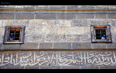 A Separation  (Mahmoud El-Kholy) Tags: window pigeon mosque ibn separation tulun