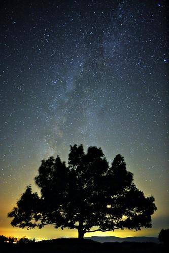 Milky Way over Big Meadows, SNP