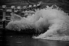 La fuerza del mar (Lulis.R) Tags: sea blackandwhite bw byn blancoynegro water photography agua splash gijon ola fuerza cantábrico energía instagram