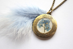 Baby Blue Forget-Me-Not Flowers Preserved under glass like Resin on a Vintage Bronze Locket with matching Marabou Feathers (Morticia's Shop) Tags: christmas pink blue plants baby flower me nature glass bronze vintage real gardening lock decorative wildlife secret feathers royal special chain cast gift dome present forgetmenot easy resin locked edwardian bot lobelia forget keepsake 20inch marabou polymer locket envirotex