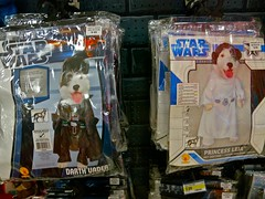 Dog Wars {262/365} (therealjoeo) Tags: dog halloween starwars costume princessleia darthvader