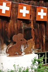 topolini rossocrociati (me, paolo and the seven wonders + two) Tags: schweiz suisse svizzera montagna bandiera lenk simmental roditori oberlandbernese