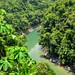 Il colore verde dei fiumi verso Rio Claro