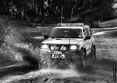 Lee Playing in the  Watagans State Forest 25-6-12 2 (smortaus) Tags: blackandwhite bw by photography this town is photo d manly australian f nsw myphotos myimages australianimages australianphotos smortaus dannyhayes photosfromaustralia australiabest australianblackandwhite danielfhayes1962nswaustralia photosbydannyhayescopyright2013nswaustralia australianswphotos hayes1962home