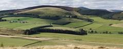 Panorama:  Balduff Hill viewed north from the Hill of Loyal 22092012 (Shandchem) Tags: scotland angus hill perthshire perh caterantrail hillofloyal mountblair balduff kinross2