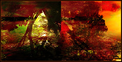 Autumn Abstract (Tim Noonan) Tags: red abstract black colour reflection tree green texture water yellow digital photoshop dark twilight pond diptych mood branches luminous mosca hypothetical vividimagination artdigital greenscene shockofthenew trolled stickybeak newreality sharingart maxfudge awardtree maxfudgeawardandexcellencegroup magiktroll exoticimage digitalartscene netartii