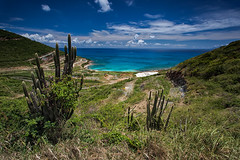 Untainted View... for now (timcorbin) Tags: ocean sky colour beach cacti canon landscape island stmartin caribbean leefilters
