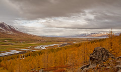 River Hrg...fall. (joningic) Tags: autumn sky fall yellow iceland hrgrdalur hrg hrgrsveit