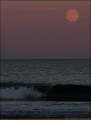 2016-07-19 Moonrise at Beach (169) (Paul-W) Tags: ocean blue sunset sky seagulls water clouds sand surf waves purple wells moonrise ogunquit 2016 northogunquitbeach