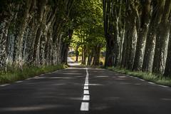 Provence - on the road (zenofar) Tags: