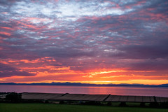sunset_field_walking_3970-3 (allybeag) Tags: sunset fields solway cumbria crosby