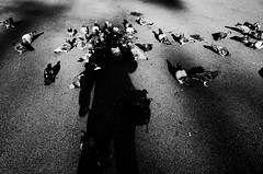no.943 (lee jin woo (Republic of Korea)) Tags: snap photographer street blackandwhite ricoh mono bw shadow subway self hand gr korea snapshot streetphotograph photography monochrome