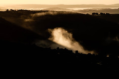 Sunrise and the fog (NikNak Allen) Tags: plymouth devon dartmoor moor morrland tor hill hills mist sun sky distance horizon light morning sunrise shadows tree trees
