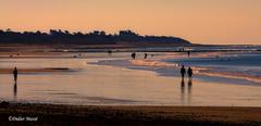 Scne de vie sur la plage au coucher du soleil (didier95) Tags: coucherdesoleil plage ileder personnage paysage mer charentemaritime