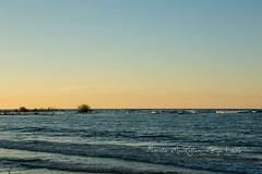 20160828-IMG_7735-WM (Pamela McLellan Zmija) Tags: saugeenshores portelgin sunset beach lakehuron goblesgrove sunshine pamelamclellanzmija