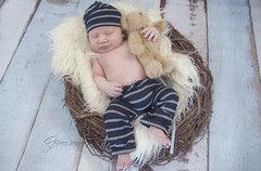 DSC_6072 (Claire Jaggers Photography) Tags: newborn baby infant boy babyboy nest teddybear hat indoor sidelight nikond700 nikon80200mm