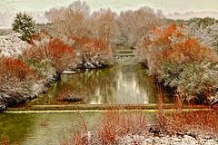 flascio innevato (zuroccu) Tags: fiumi acqua inverno neve paesaggi