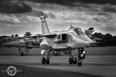 """ Jaguar "" (SJAviation.net) Tags: raf aircraft nikon rafcosford jet 238squadron xx725 jaguar gr3a aviation sepecat"