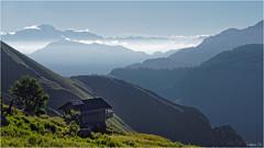 Mont Blanc (guillaumez.wix.com/photographie) Tags: montagne bauges montblanc mtblanc mont blanc sommet savoie haute 73 74 chalet vue panorama pov dfil mountains alpes france olympus em5 omd 1240mm morning brumes matinales matin rando randonne trlod