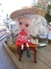 Fulla (Dolly Aves) Tags: blythe blythedoll petites fulla sunday brunch
