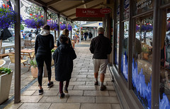 Feel the Purple (Jocey K) Tags: newzealand akaora flowers shops reflections people tabels chiars buildings bankspeninsula
