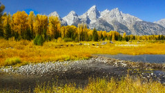 A Place In My Heart (Aspenbreeze) Tags: autumn trees mountains wyoming grandtetons peaks grandtetonnationalpark fallseason thegalaxy schwabacherslanding colorphotoaward aspenbreeze rememberthatmomentlevel1 rememberthatmomentlevel2 rememberthatmomentlevel3 topphotospots tpslandscape topphotosspots