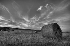 Last days of summer (Scott B~) Tags: hay nottinghamshire haybales ng11