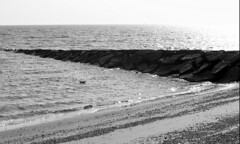Summer Days (mhester) Tags: summer blackandwhite beach nature summerdays beachshots blackandwhitepictures summershoots