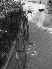 llucmajor amb bicicleta (tomeu duran) Tags: bike europa europe euro bicicleta bici summertime mallorca islas velo bicicletas majorca bh 1951 baleares estiu balearic balears illesbalears balearics islasbaleares llucmajor illesbalers lllucmajor bicicletasvintage bh1951 llucmajorambbicicleta especialbh