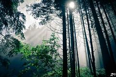 Good Light ..... !!! [EXPLORE] (Riccardo Brig Casarico) Tags: light italy mountains wow photography photo reflex nikon europa europe italia colours foto fotografia colori montagna atmosfera luce brig 18105 riki d5100 brigrc