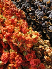 sun-dried (Scorpocat) Tags: sun pepper sunny istanbul vegetable aubergine dried biber gne dolma kadky sebze patlcan patlcandolmas gneli biberdolmas kurutulmu