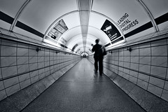 Leading Digital Progress (Daniel Borg) Tags: uk england blackandwhite white black london underground vanishingpoint unitedkingdom tube bank tunnel symmetry fisheye londonunderground 8mm cityoflondon cityofwestminster samyang londonstation samyang8mm canon550d