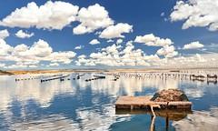 reti deposte a Mar Piccolo (invitojazz) Tags: italy net clouds reflections nikon italia nuvole mare piccolo puglia taranto reti d90 riflessioni invitojazz vitopaladini